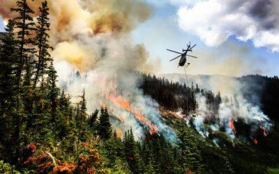 Incendi in Canada